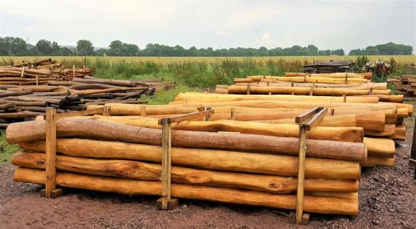 Robinien Stammholz als Bauholz (vglb. mit Tropenholz) trocken - sauber geschältes Kernholz aus der Stammmitte – 1 LFM